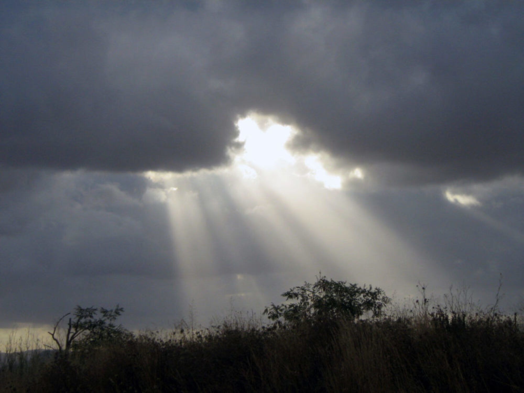 Ram ON Cloud